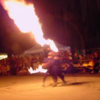 Festa delle Ciliege 2008