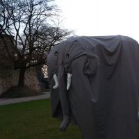 Gli Elefanti del Circo fantastico