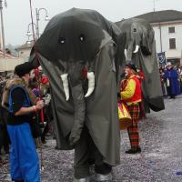 elefanti-circo-fantastico-008