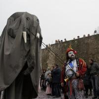 elefanti-circo-fantastico-011