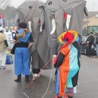 elefanti-circo-fantastico-013