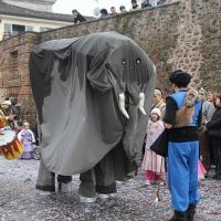 elefanti-circo-fantastico-018