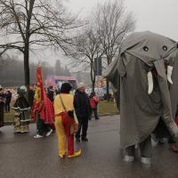 elefanti-circo-fantastico-020