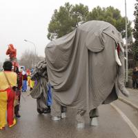 elefanti-circo-fantastico-021