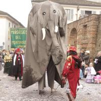 elefanti-circo-fantastico-037