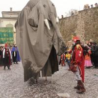 elefanti-circo-fantastico-038