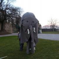 elefanti-circo-fantastico-046