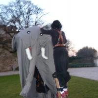 elefanti-circo-fantastico-047