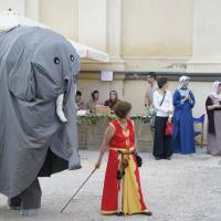 sacchetta-2011-014
