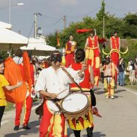 sacchetta-2011-036