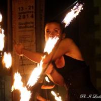 poggio-a-caiano-2014-118